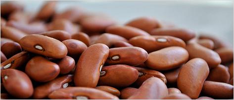 Divertículos e diverticulite aguda: posso comer sementes, grãos e fibras?
