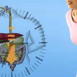 Constipação Intestinal: sintomas e tratamento