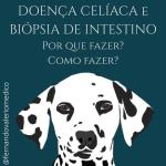 Doença Celíaca: entendendo a biópsia.