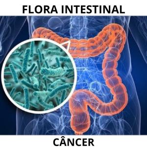 Flora intestinal e a sua relação com o tratamento do câncer.